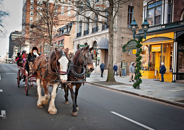 horse-and-carriage-image