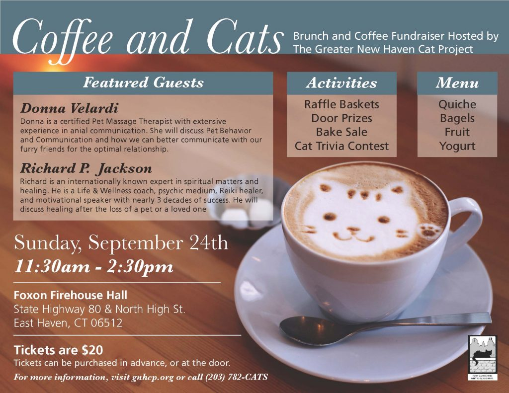 greater new haven cat project The greater new haven cat project, inc (gnhcp) is a 501(c)(3) nonprofit volunteer staffed organization dedicated to improving the lives of stray, abandoned, and.