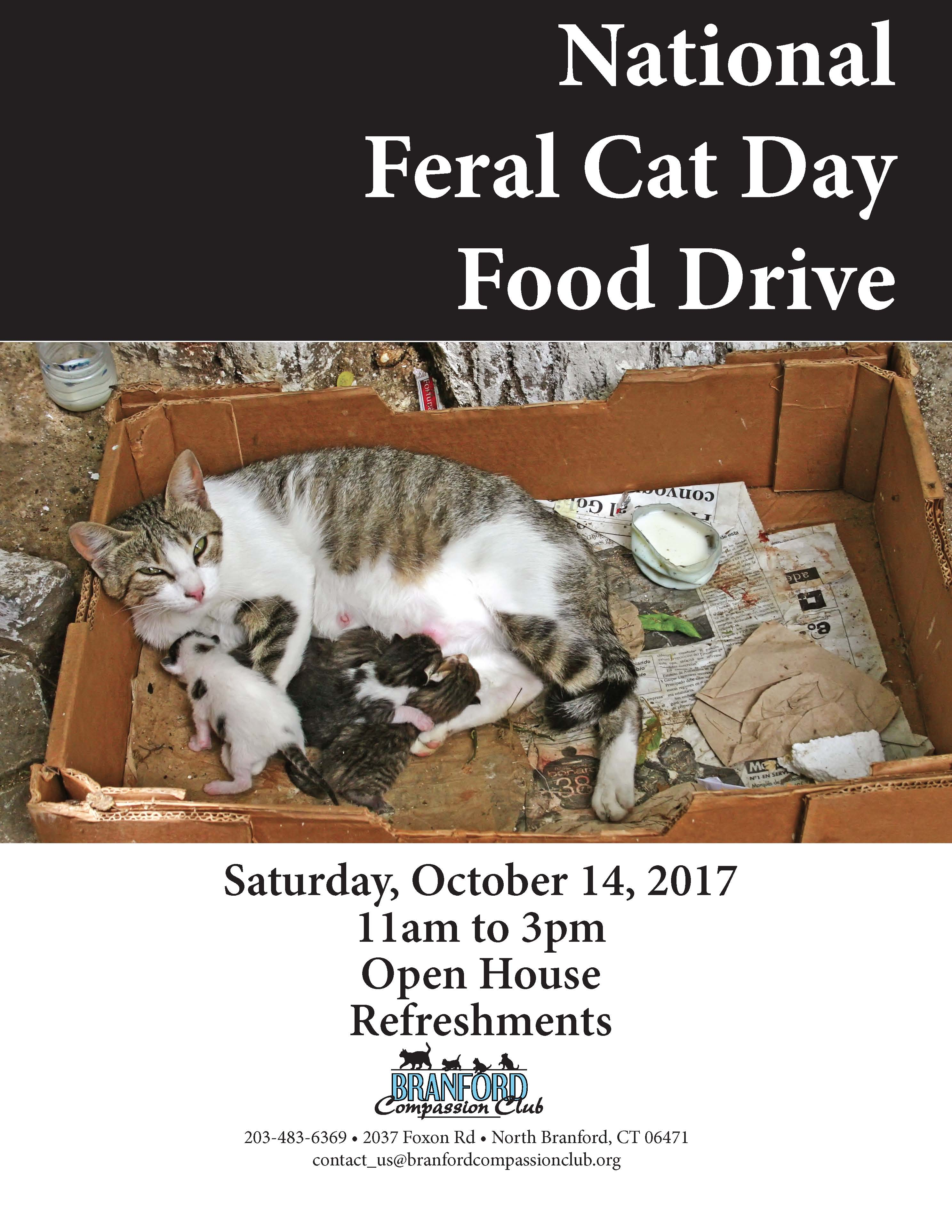 2017 BCC Feral Cat Day flyer -Oct14